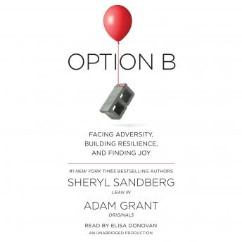 Option B audio book